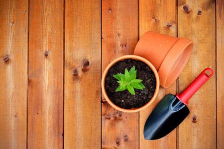 Investor für Garten- und Landschaftsbaubetrieb gesucht